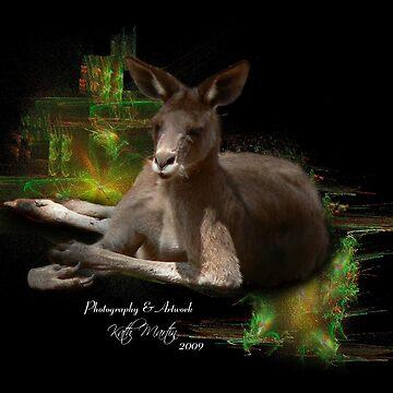 Kangaroo by kathmartin