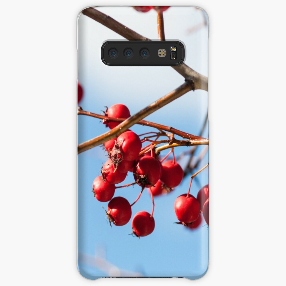 berry nice Cases & Skins for Samsung Galaxy