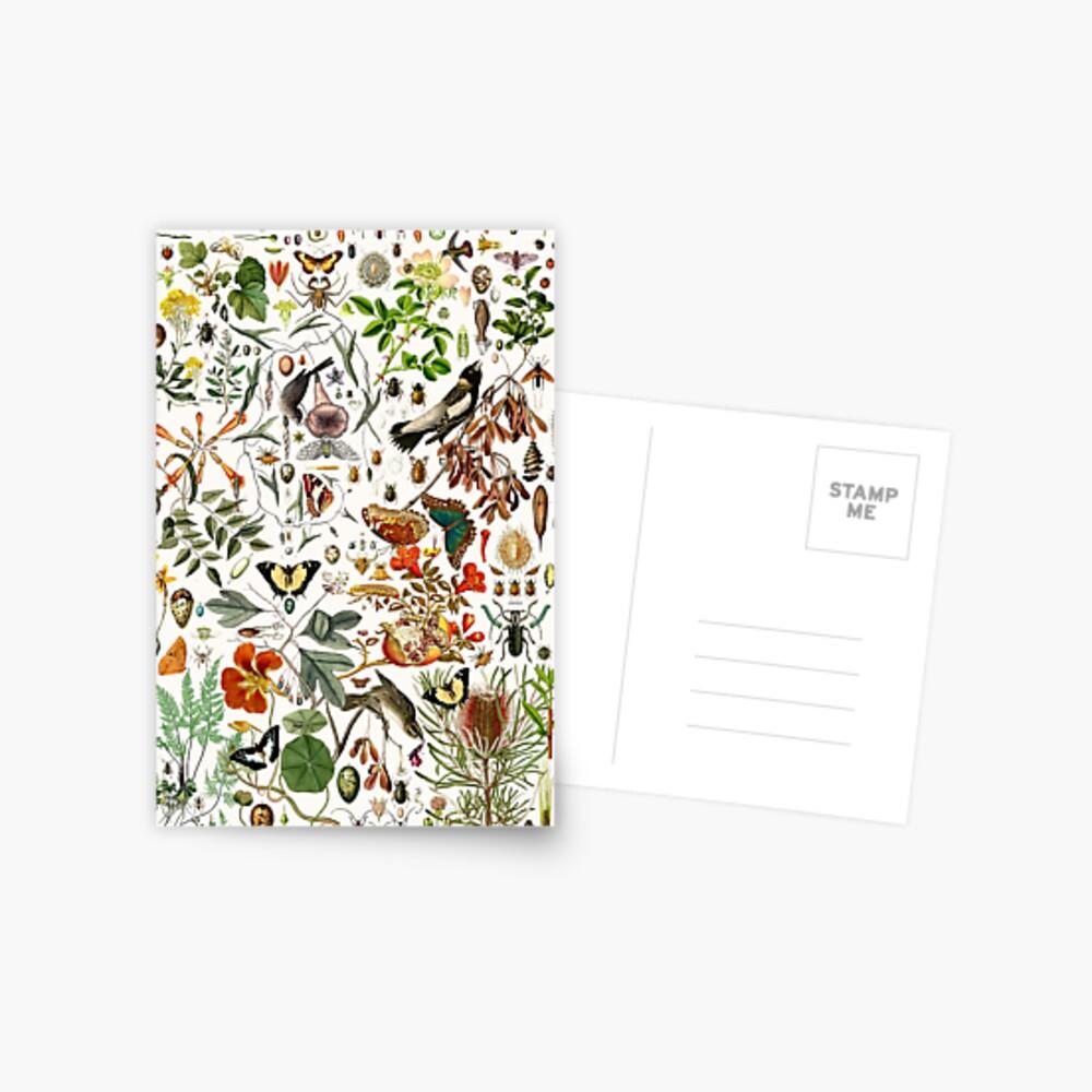 Biology 101 Postcard