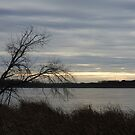 Cloudy Day Over a Frozen Lake by silverdragon