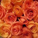 Peach and Yellow Rose Bouquet by silverdragon