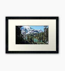 ice cap Framed Print