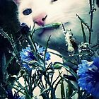 Stop and smell the flowers by iamelmana
