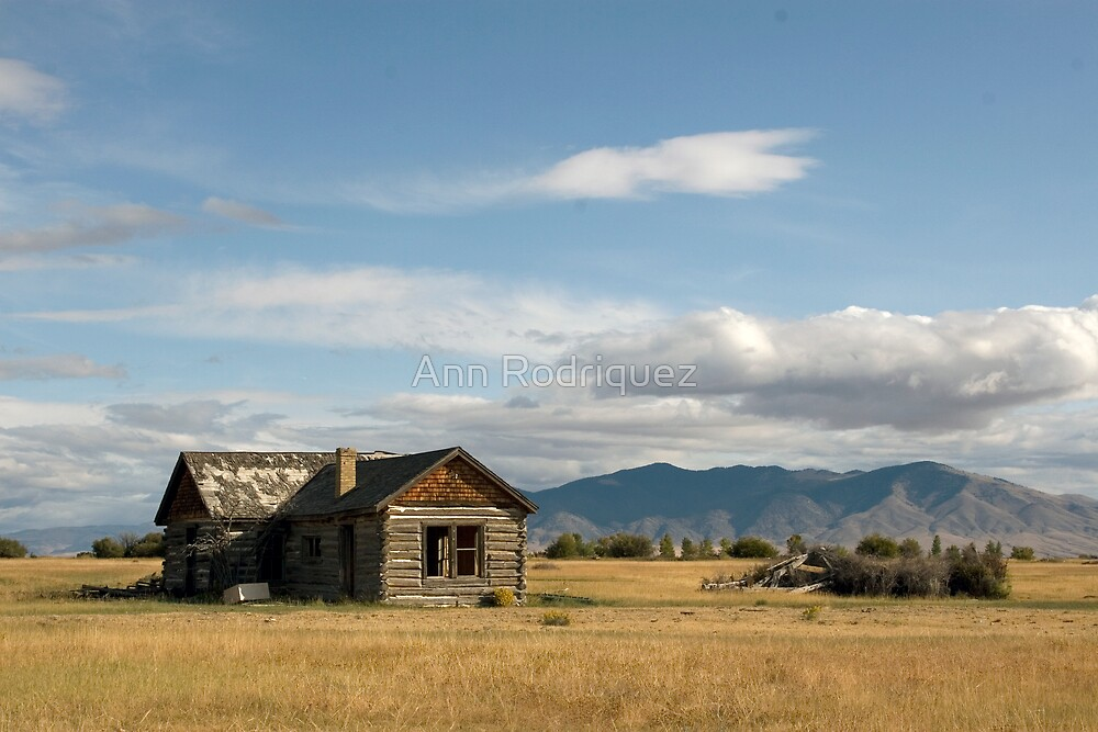 Homestead by Ann Rodriquez