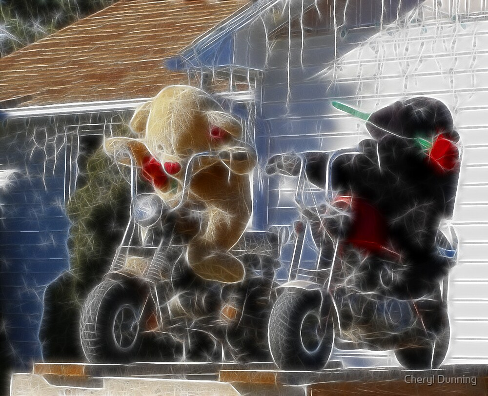 new biker gang by Cheryl Dunning
