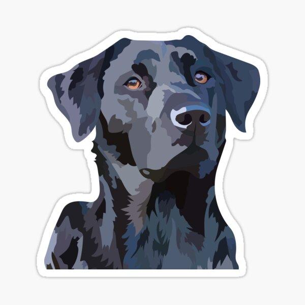 Black Labrador 2 Sticker