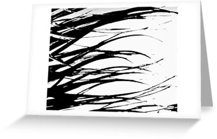 Black and White Everglades Grass.. retouched  by Isa Rodriguez