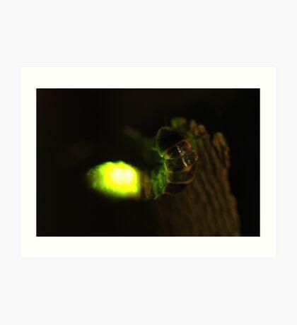 glowworm Art Print