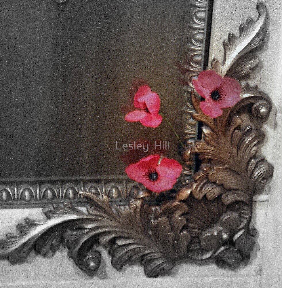 Poppies in the Corner! by Lesley  Hill