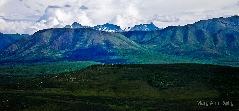 The Way to Denali by Mary Ann Reilly