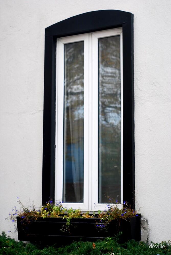 Whos looking in my window!!!!!!!!!!!!!! by deville
