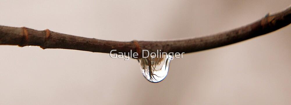 Cold November Rain by Gayle Dolinger