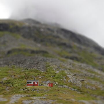 Little Norwegian cabin by erland