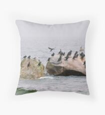 Community on the Rocks   Throw Pillow