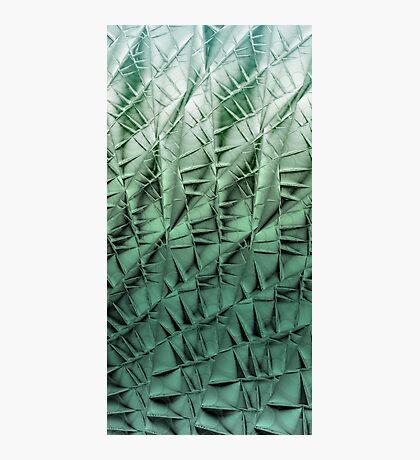 Cactus wall Photographic Print