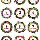 Advent Calendar stickers 1 -12 by vasylissa