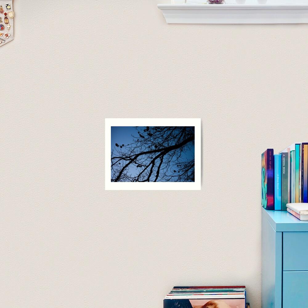 Tree in the pre-dawn light Art Print
