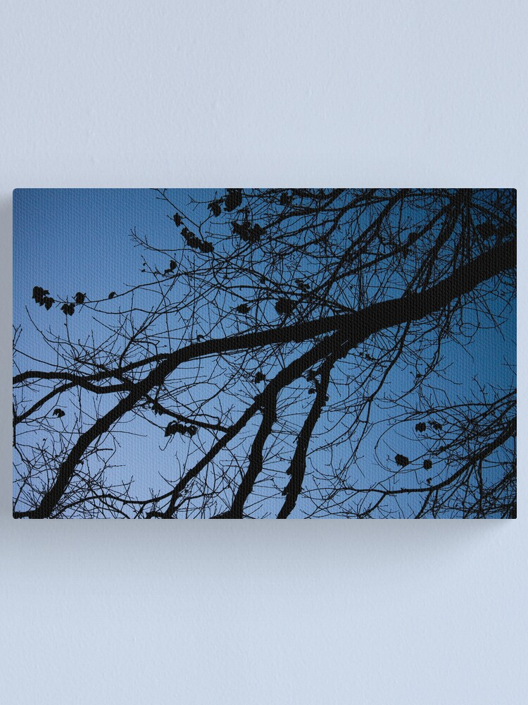 Alternate view of Tree in the pre-dawn light Canvas Print