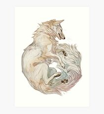Corsac fox Art Print