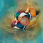 Mandarin Duck by Brian Tarr