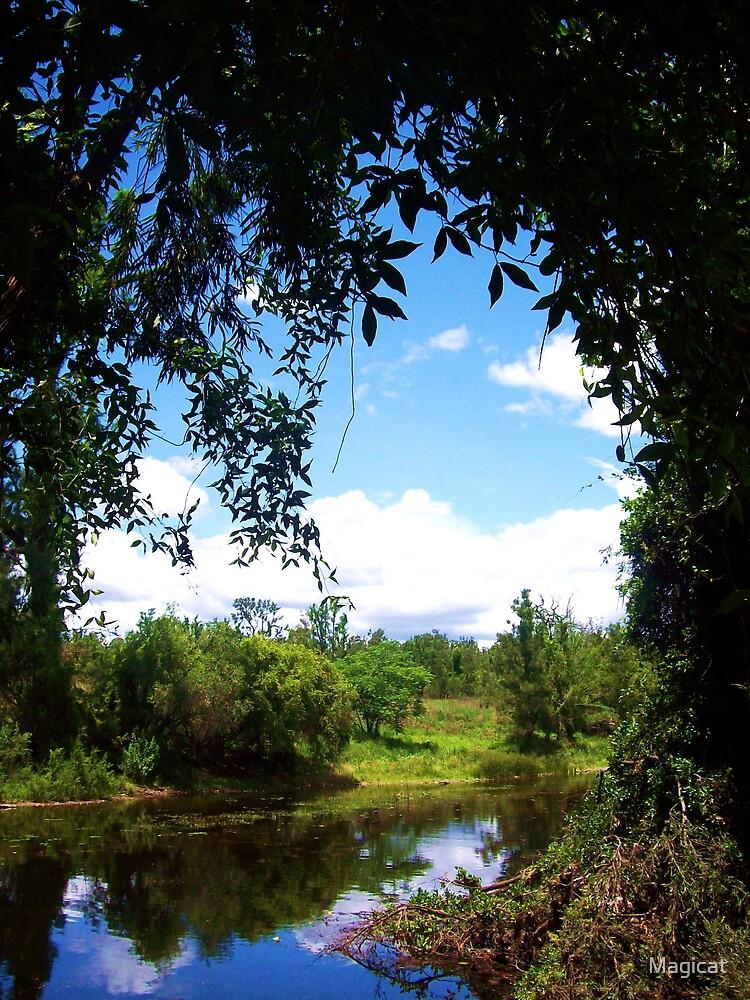 Widgee Creek by Magicat