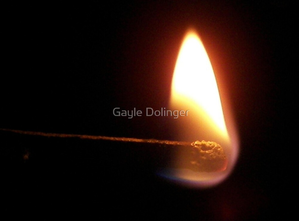 A Light In The Dark by Gayle Dolinger