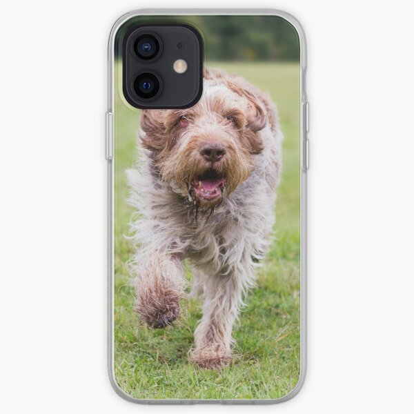 Running Spinone iPhone Soft Case