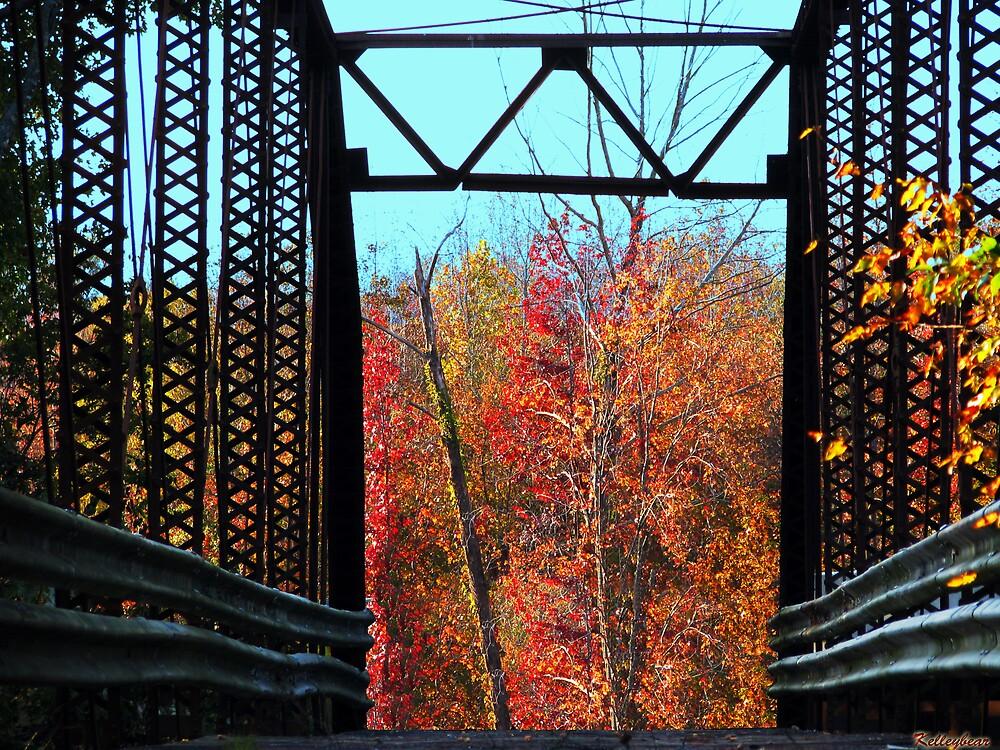 A Bridge into Fall  by kelleybear