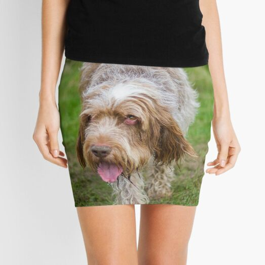 Brown Roan Italian Spinone Dog Mini Skirt