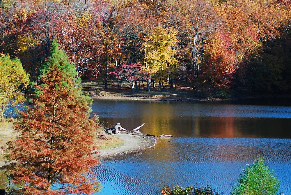 Awesome Fall Colors by kentuckyblueman