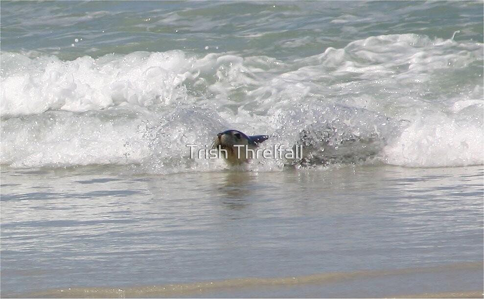 Body surfer by Trish Threlfall