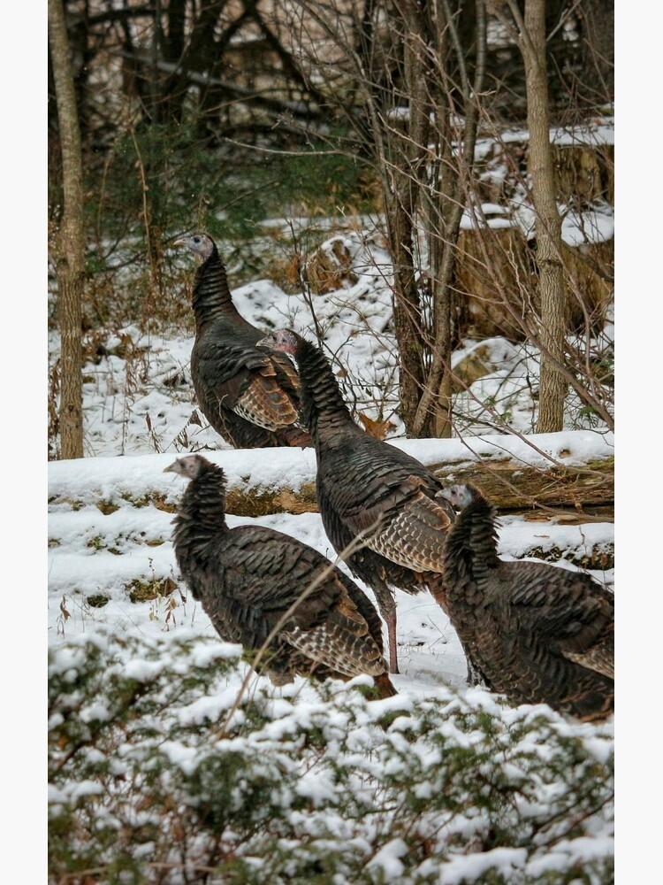 Christmas turkeys by debfaraday