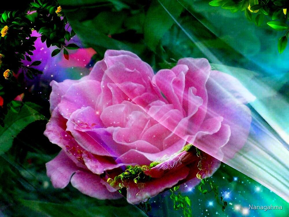 Fantasy Rose by Nanagahma