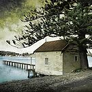 Boat House by Naomi Frost