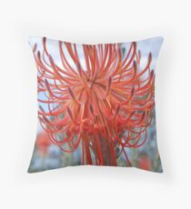 Leucospermum reflexum  (Rocket Pincushion) King's Park, Perth Throw Pillow