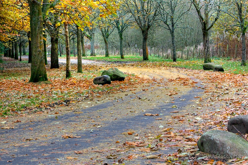 Eglingtion Park Kilwinning, Ayrshire by Paul Messenger