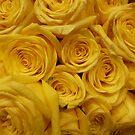 Yellow Rose Flower Bouquet by silverdragon