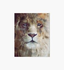 Lion // Majesty Art Board