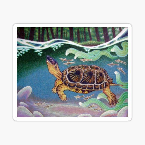Wood Turtle Color Pencil Artwork Sticker