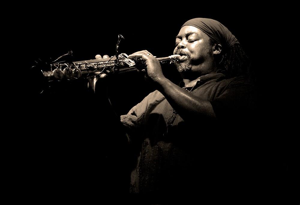 Jazz by Peter O'Kane