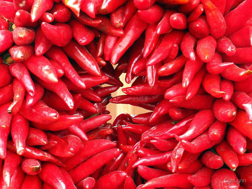 Red Chili Peppers by CynLynn