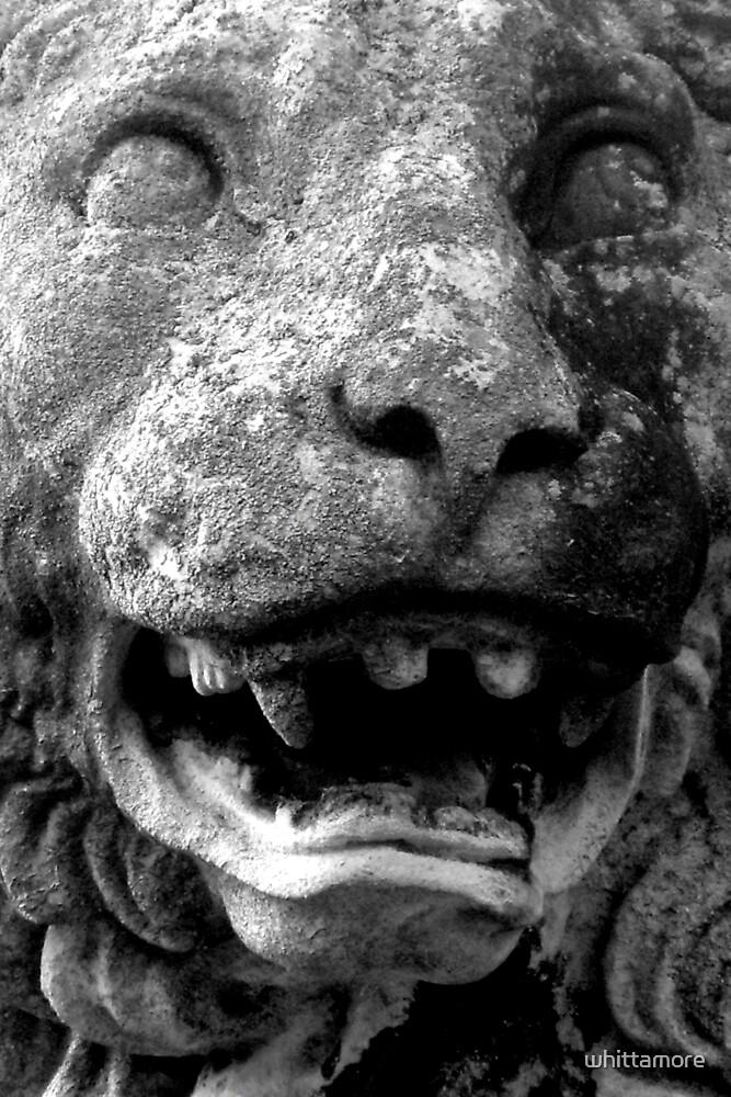 roar by whittamore