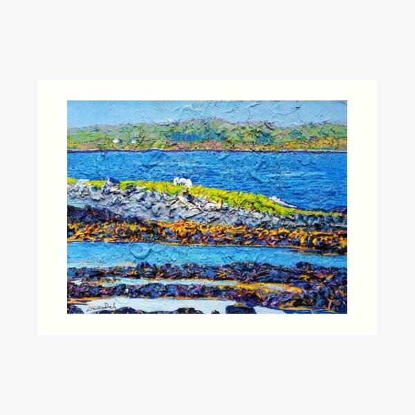 Bertraghboy Bay 3, Ireland Art Print