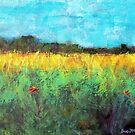 Amber Fields by Sue McMillan