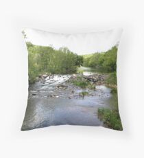 Chester County Falls Throw Pillow