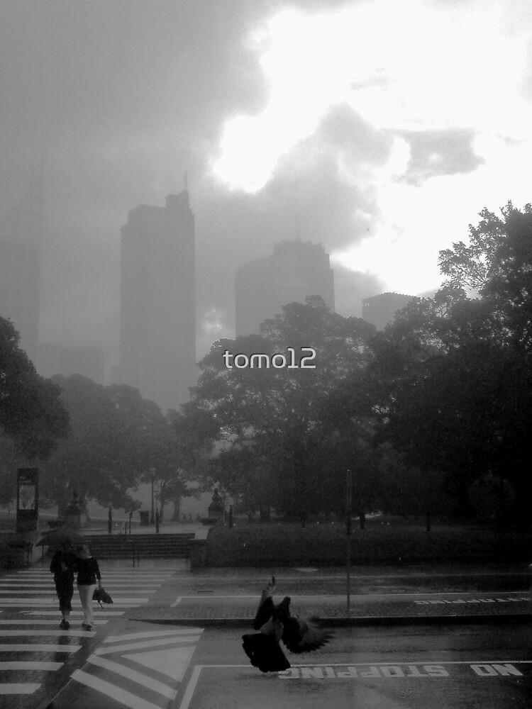sydney rain by tomo12
