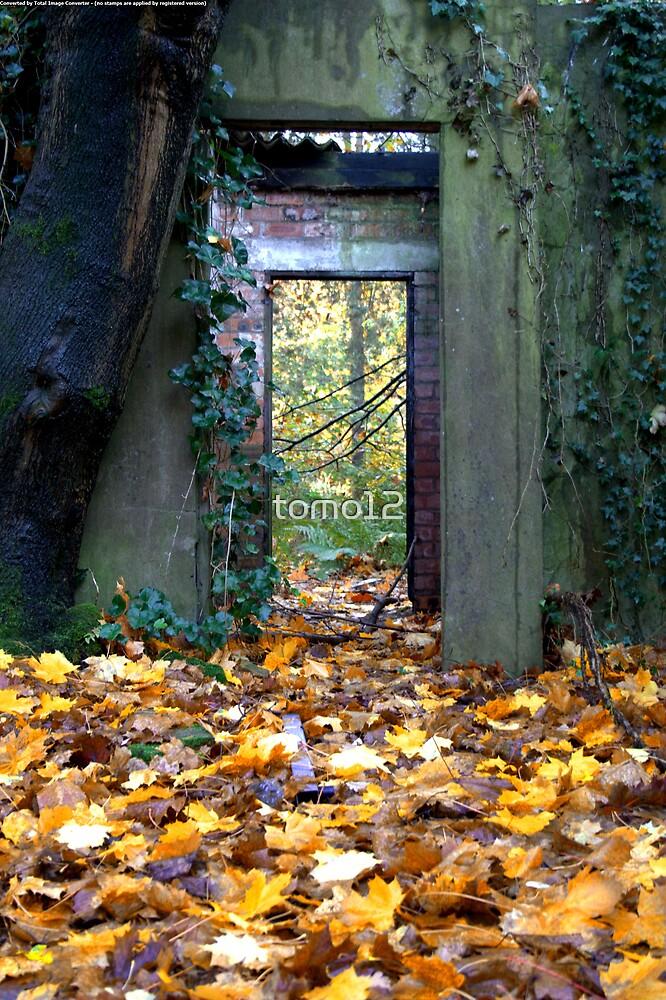 door way by tomo12