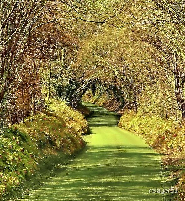 Frensham lane by relayer51