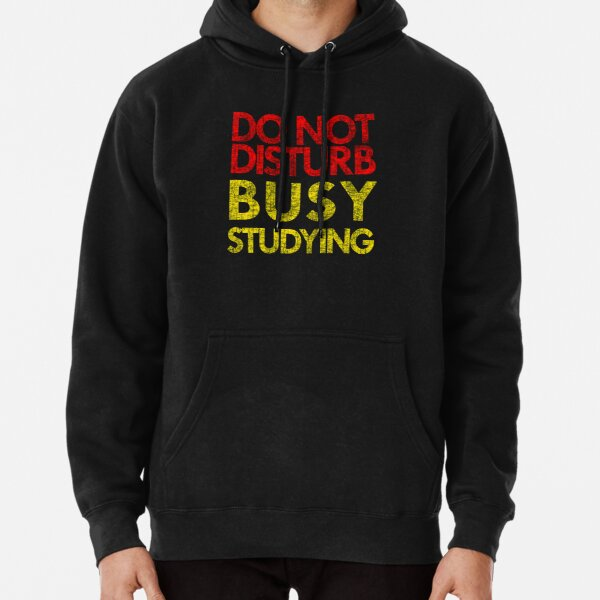 Do Not Disturb Busy Studying Pullover Hoodie