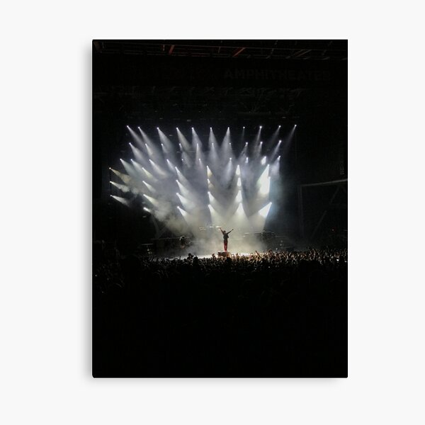 Green Day  Canvas Print